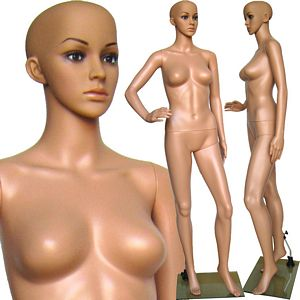Plastic Ladies Full Size Mannequin with Removable Head